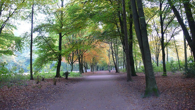 Stadtpark Hamburg im h´Herbst